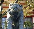 京都 鞍馬寺のパワースポット 狛虎「うん」です。